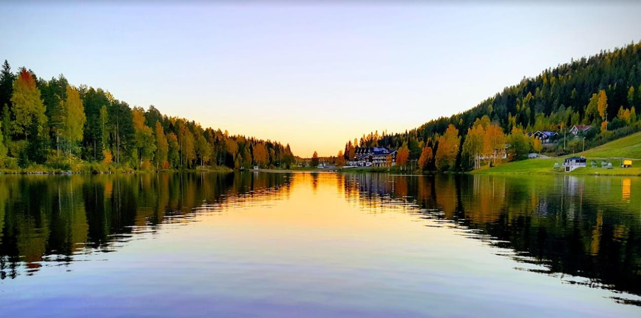 IMフィンランド